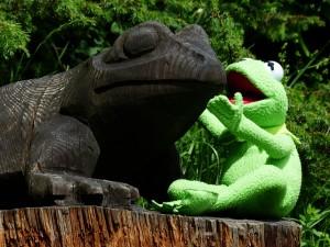 foto de la rana Gustavo hablando en inglés a un camaleon