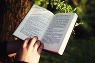 chico leyendo un libro de inglés al aire libre